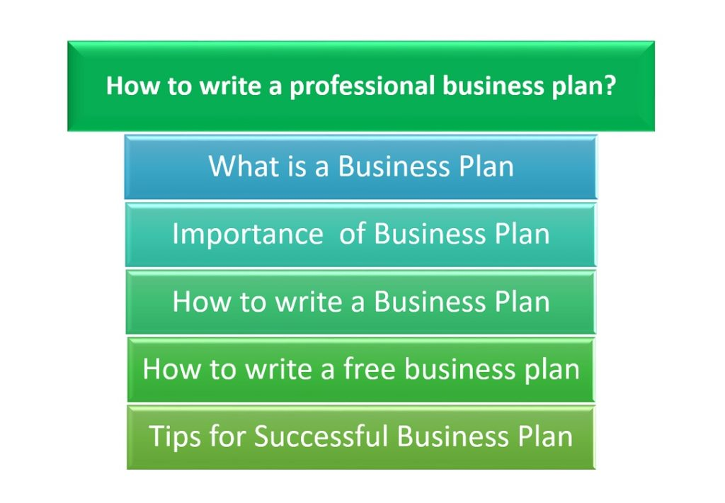 I need a professional business plan writer